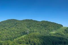 横跨森林的大功率车道 免版税库存照片