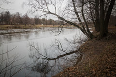 横跨池塘的桥梁 库存图片