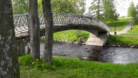 横跨河的人行桥在一个安静的绿色城市公园 股票录像