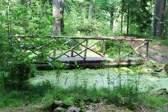 横跨沼泽的桥梁在公园 库存照片