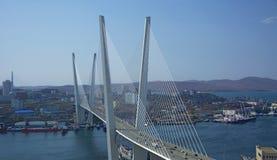 横跨海湾的桥梁,在港口城市 晴天和盛大的绿叶 库存照片
