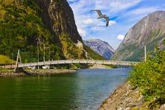 横跨海湾Sognefjord -挪威的桥梁 库存照片