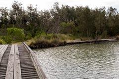 横跨湖的木桥 库存图片
