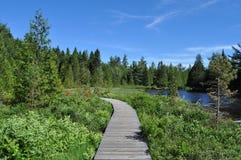 横跨湖的木道路 库存照片