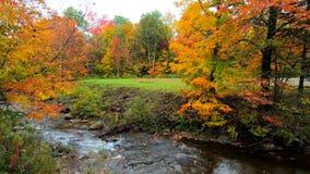 横跨滔滔不绝地说通过充满活力的树的小河的平底锅在秋天颜色期间在佛蒙特 影视素材