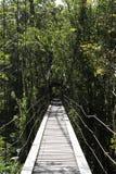 横跨瀑布的木桥在一条倾斜的钢丝绳 库存照片