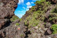 横跨火山岩区域的轨道 免版税库存照片
