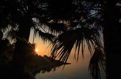 横跨现出轮廓棕榈树的Mallieha海湾的黄褐色的日出 免版税库存图片
