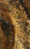 横跨被削减的木纹理垂直背景 免版税图库摄影