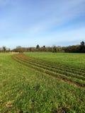 横跨领域的看法与在草的辐形条纹 免版税库存照片