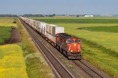 横跨绿色和黄色大草原的容器火车 图库摄影