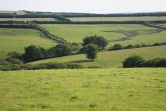横跨Exmoor的看法 免版税库存照片