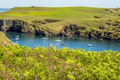 横跨Skomer海岛,威尔士内在海湾的一个看法  免版税库存照片