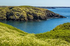横跨Skomer海岛,威尔士南部的海湾的一个看法  免版税库存图片