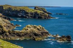 横跨Skomer海岛,威尔士坚固性,岩石海岸线的一个看法  免版税图库摄影