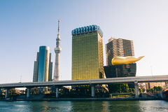 横跨Sumida河的东京地平线 免版税库存图片