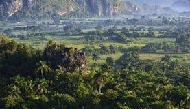 横跨Vinales谷的看法在古巴 早晨微明和雾 库存照片