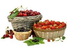 樱桃、草莓和黑醋栗在白色隔绝的柳条筐 图库摄影
