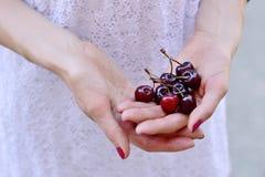 樱桃一牌照甜白色 免版税图库摄影