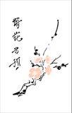 樱桃东方人 库存照片