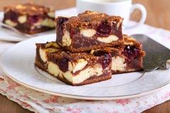 樱桃乳酪蛋糕使有大理石花纹的果仁巧克力 免版税库存图片