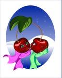 樱桃冬天 库存图片
