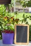 樱桃和一个空白石板板 免版税库存图片