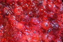 樱桃和山莓果酱 免版税库存照片