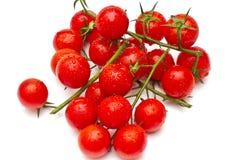 樱桃成熟蕃茄 免版税库存照片
