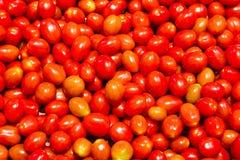 樱桃抽签蕃茄 图库摄影