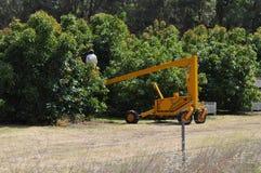 樱桃捡取器采摘果子鲕梨的工作者在果树园 图库摄影