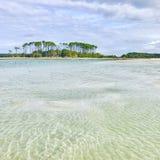 樱桃树丛海滩 免版税库存图片