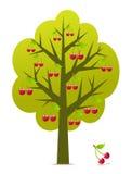 樱桃树向量 免版税库存图片
