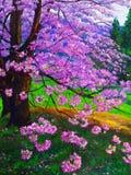 樱桃油画 免版税库存图片