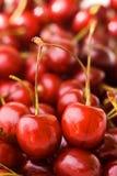 樱桃甜点 库存照片