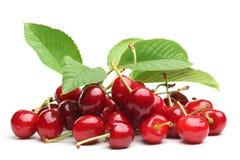 樱桃甜点 库存图片
