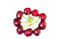 樱桃红甜点 免版税库存图片
