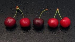 樱桃线路 库存图片