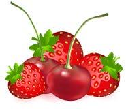 樱桃草莓向量 免版税库存照片