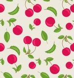 樱桃葡萄酒无缝的墙纸与绿色叶子的 皇族释放例证