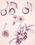 樱桃被画的现有量葡萄酒 免版税库存图片