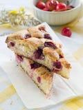 樱桃饼 库存图片