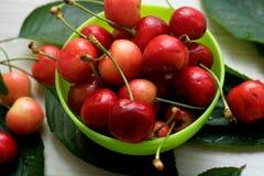 樱桃,甜和水多在一个小绿色碗,新近地被采摘 库存图片