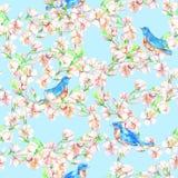 樱桃,苹果,花,鸟 水彩无缝的样式 免版税图库摄影
