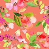 樱桃水彩的无缝的样式 向量例证