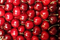 樱桃-类李属的许多植物果子  库存照片