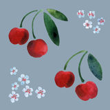 樱桃 库存照片