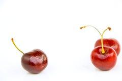 樱桃 免版税库存图片