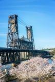 樱花和钢桥梁 免版税库存图片