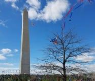 樱花在全国购物中心的风筝节日在华盛顿, 库存照片